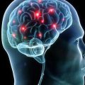 sinapsi cervello