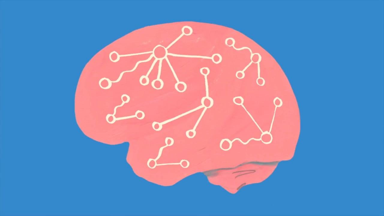 mappa cerebrale