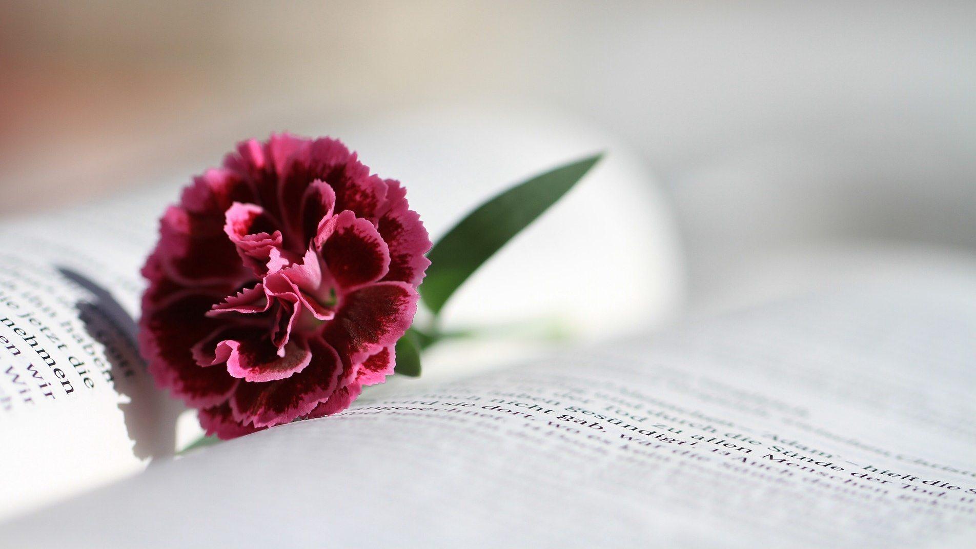 fiore segnalibro