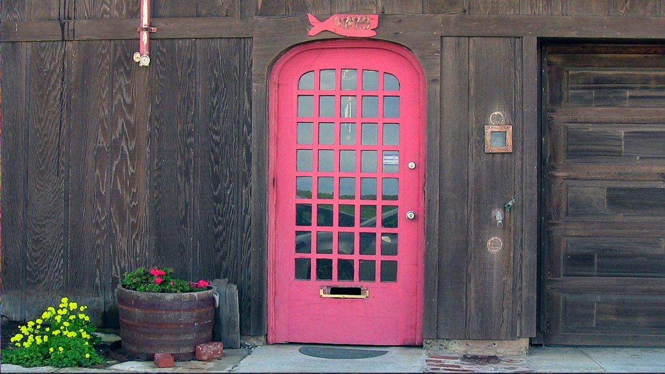 porta fuxia